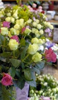 Système encaissement fleuriste horticulture